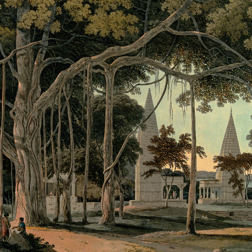 18th century painting of a Hindu temple amongst Banyan trees