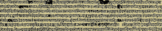 Devangari text. (from Bhanuchandra Gani)